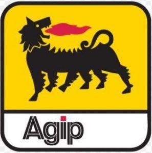 agip scholarship